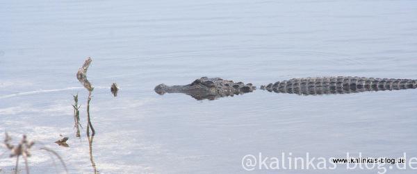 Florida_nationalpark4
